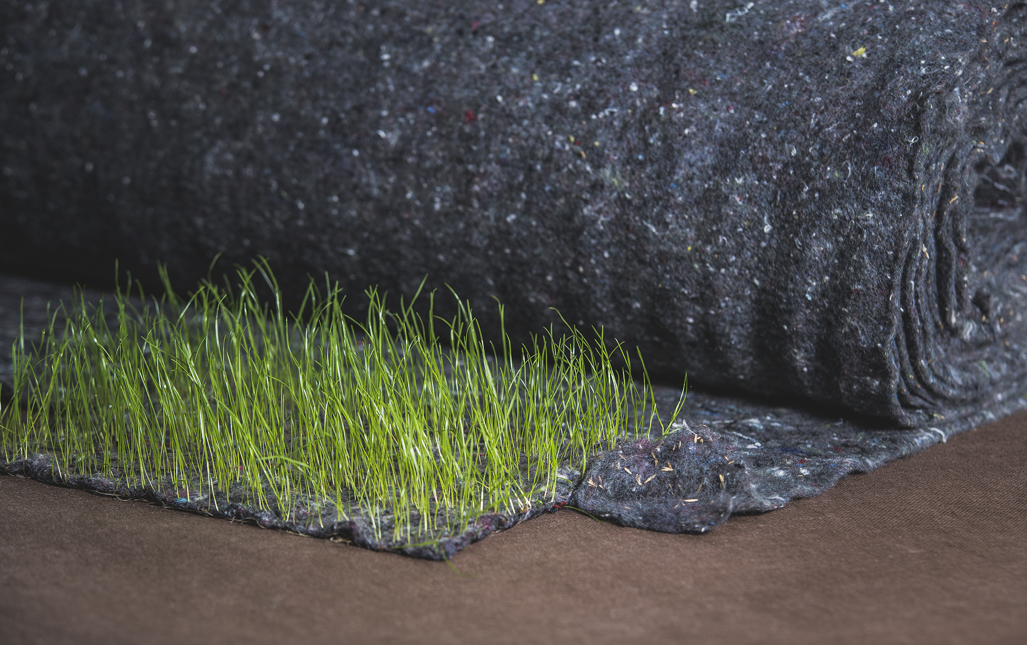 Fűtex textile with grass seed